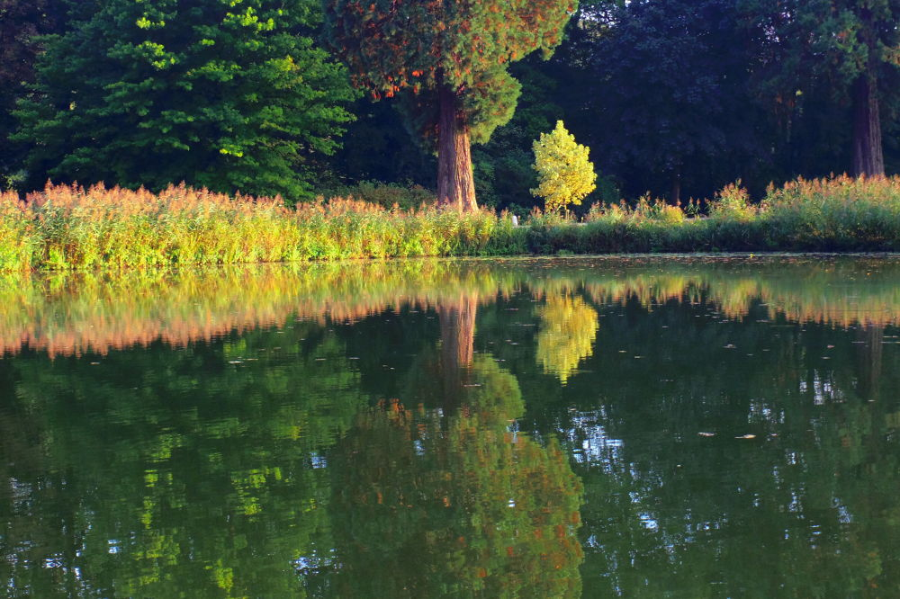 Reflections 2 by Frédérique Margraff