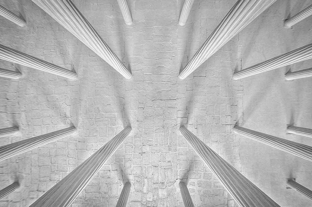 Columns by Mohammad Reza Domiri Ganji by gravity