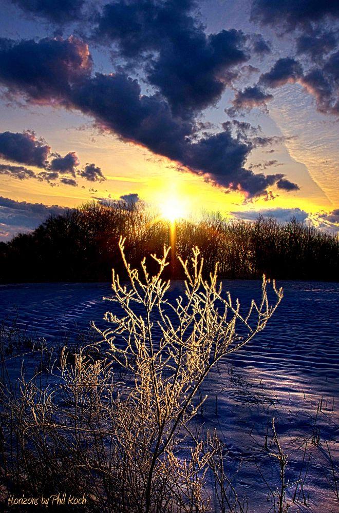 Serendipity Fb.jpg by PhilKoch