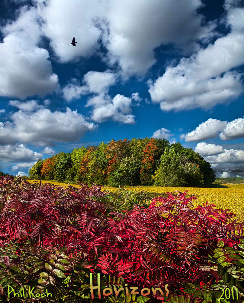 Peace of Mind  by PhilKoch