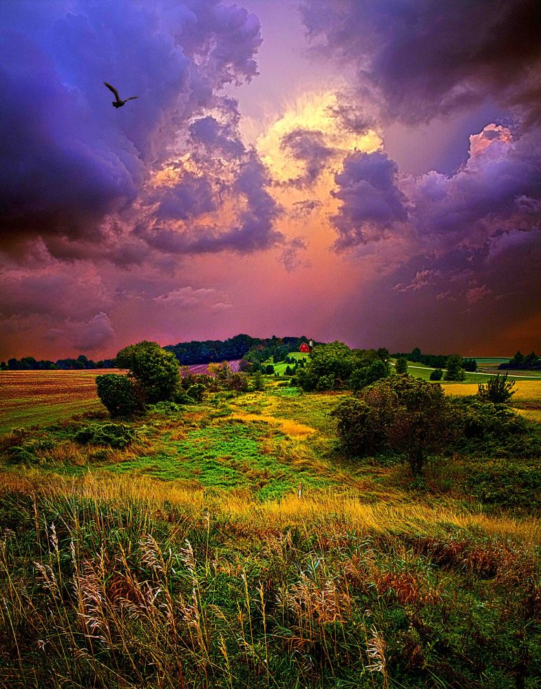 Secluded by PhilKoch