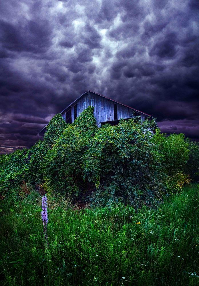 The End  by PhilKoch