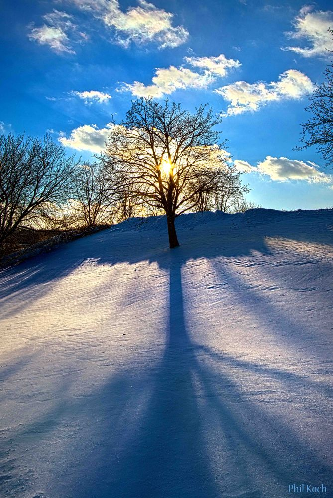 Winter  by PhilKoch