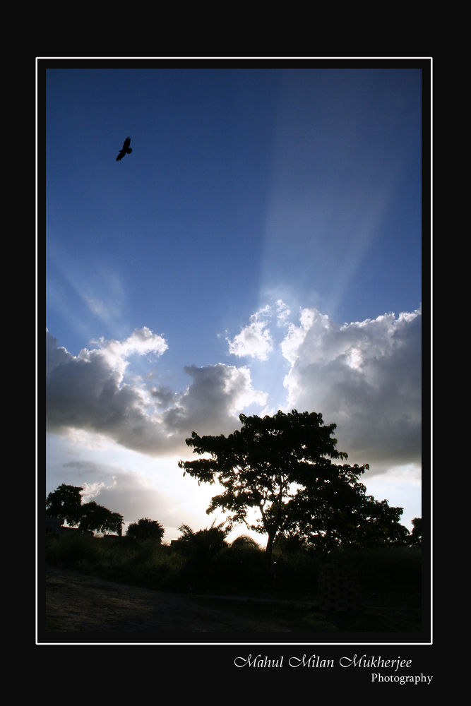 First light by Mahul milan Mukherjee