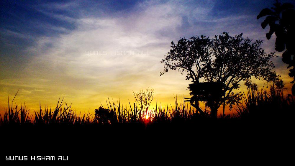sunset by YUNUS HISHAM ALI