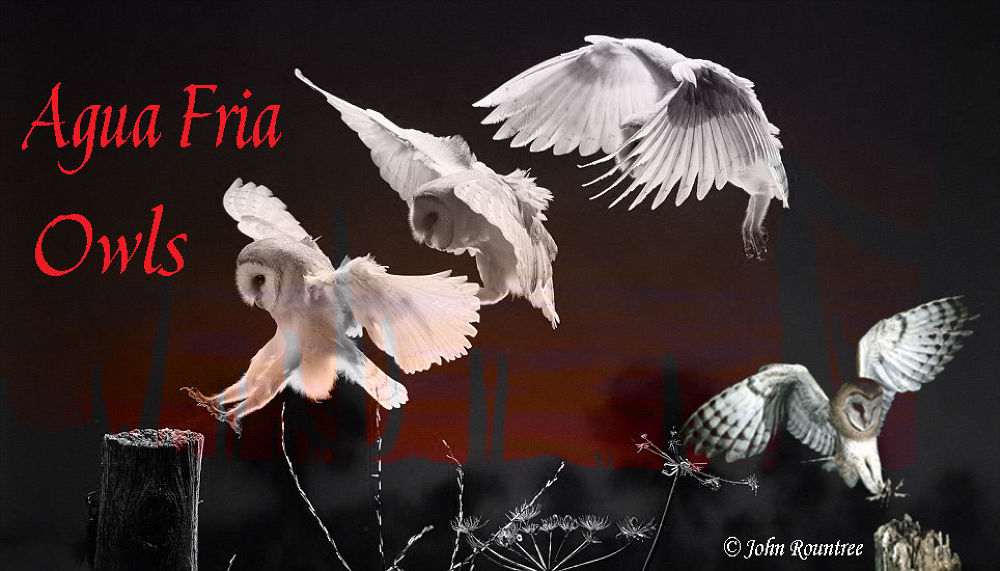 aguafria1 by johnny