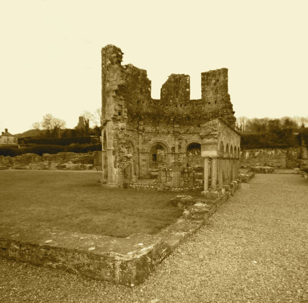 Mellifont Abbey Co Louth Ireland by Peter Purdue