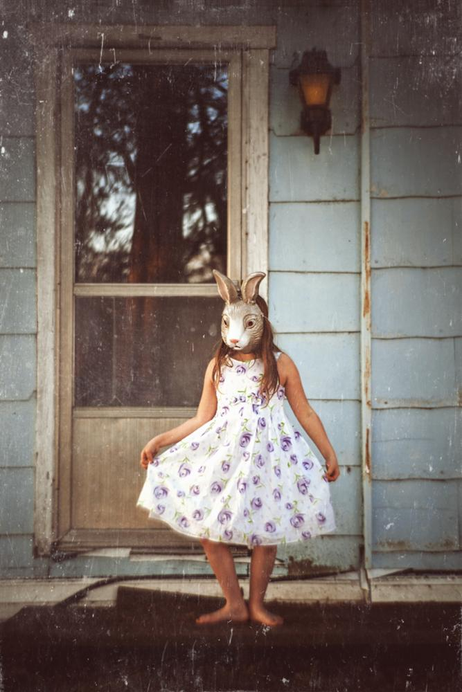 Bunny by Suzanne Fielding Paul