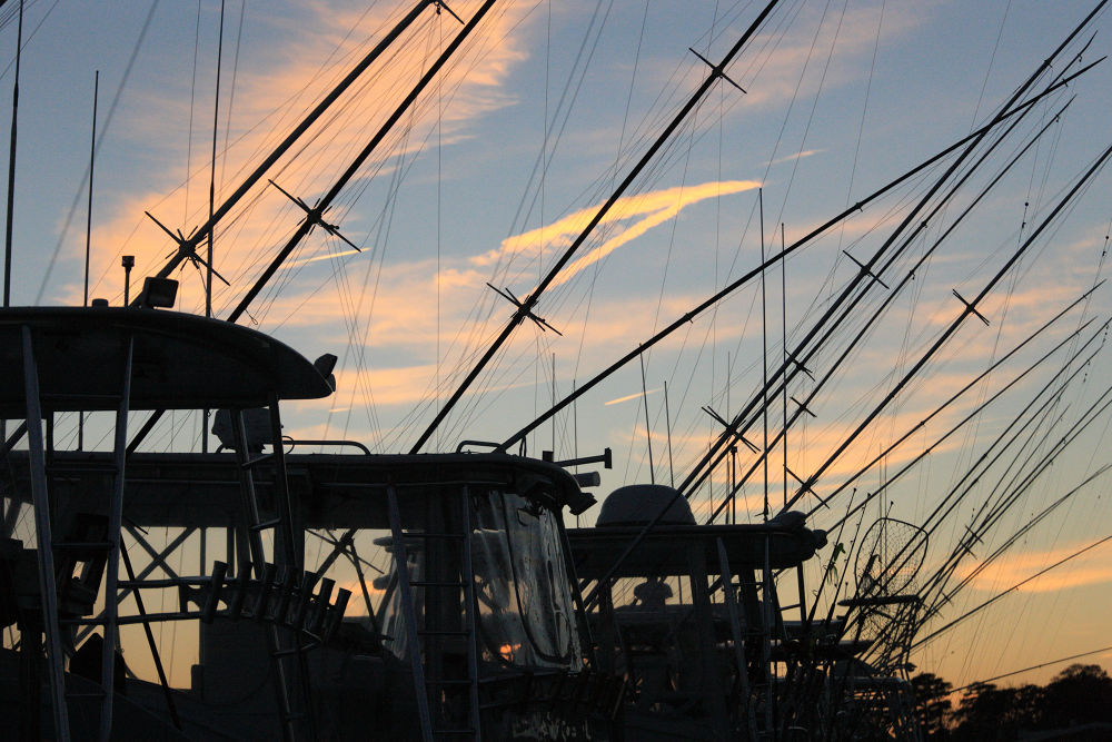 Fishing Fleet at Sunset by Pete Federico