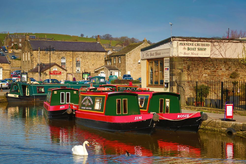 a sunny day with rosie and jim by Mark Pearson