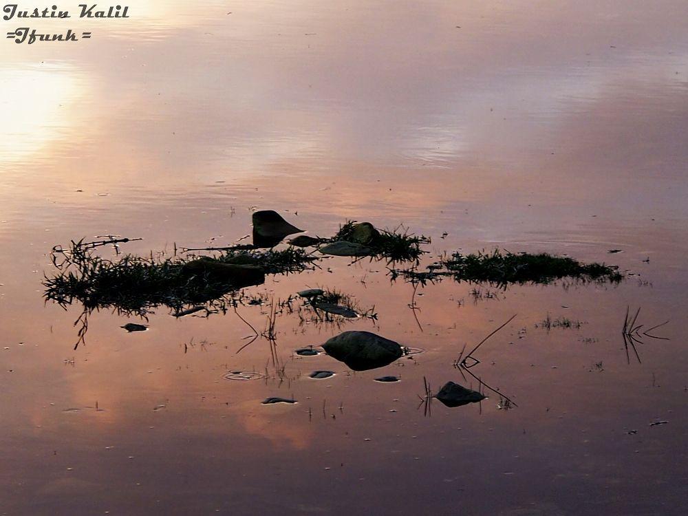 Knysna River, incoming tide by Jfunk