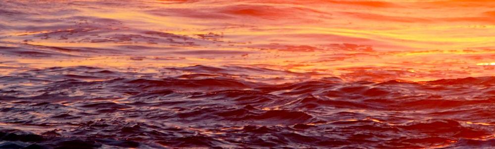 Ocean red by Jfunk
