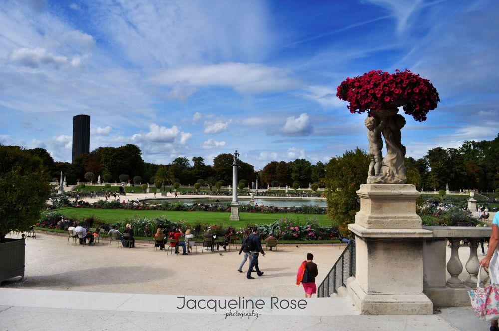 Paris by Jacqueline Rose