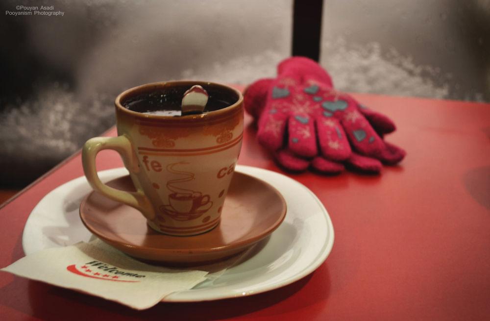Hot & Cold by Pouyan Asadi