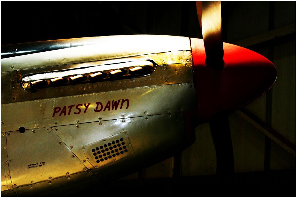 PATSY'S ID PHOTO by Danie Knipe