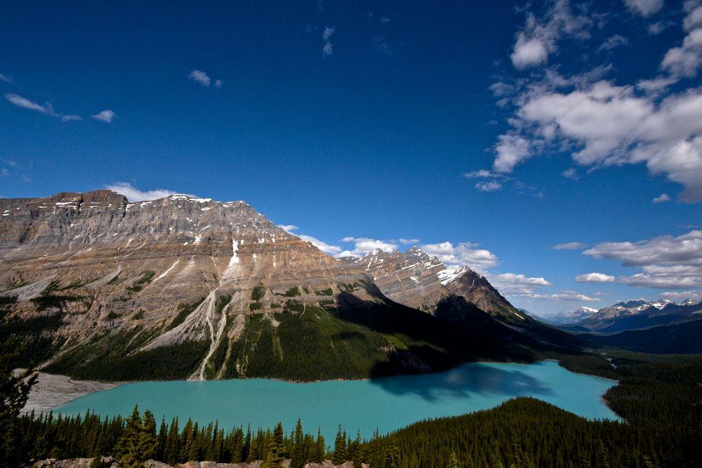 Photo in Random #peyto #canada #banff #canadian rockies #landscape