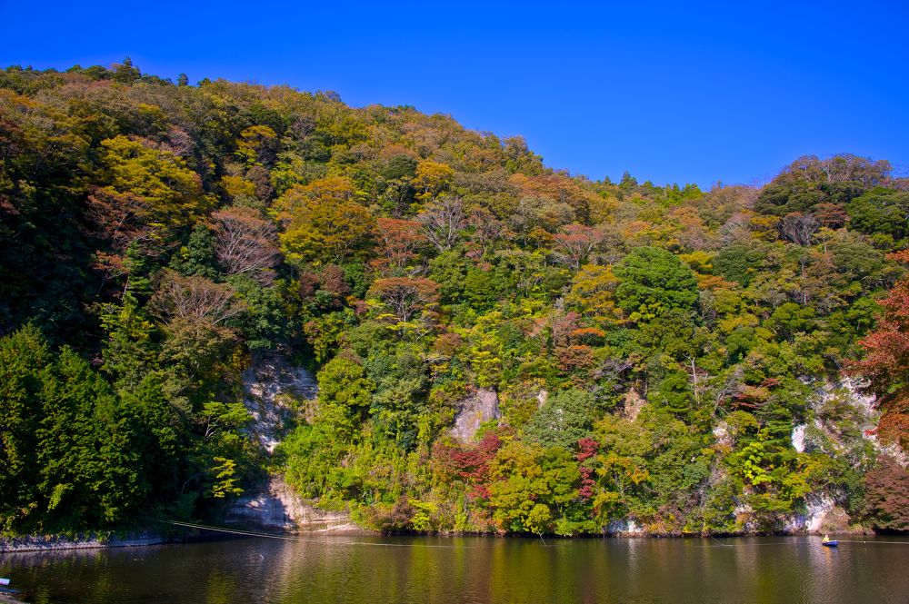 Foliage Season (Lake Mishima) by matsuzawa