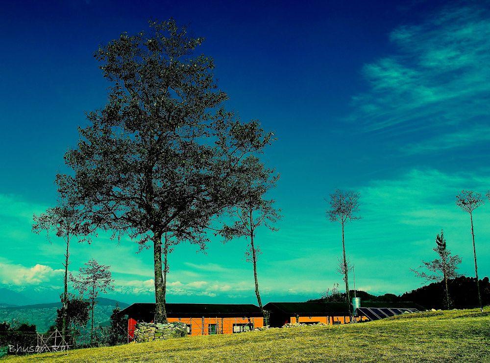 P1011103 by Bhusan Suwal