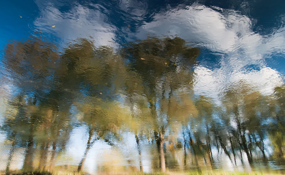 Photo in Abstract #reflections #water #abstract #autumn #clouds #trees