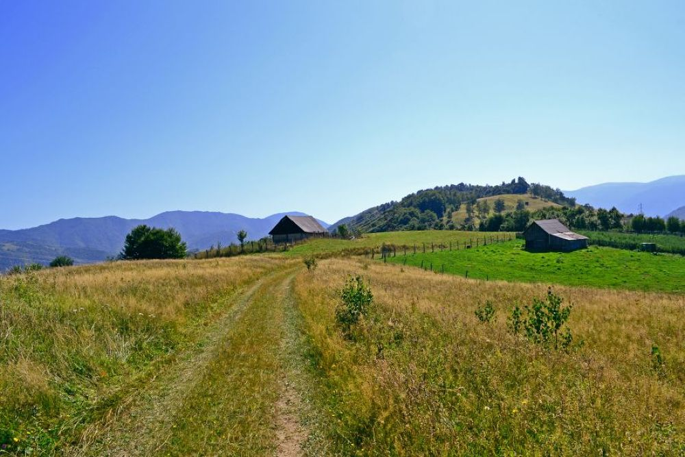 Road on a hill by cito