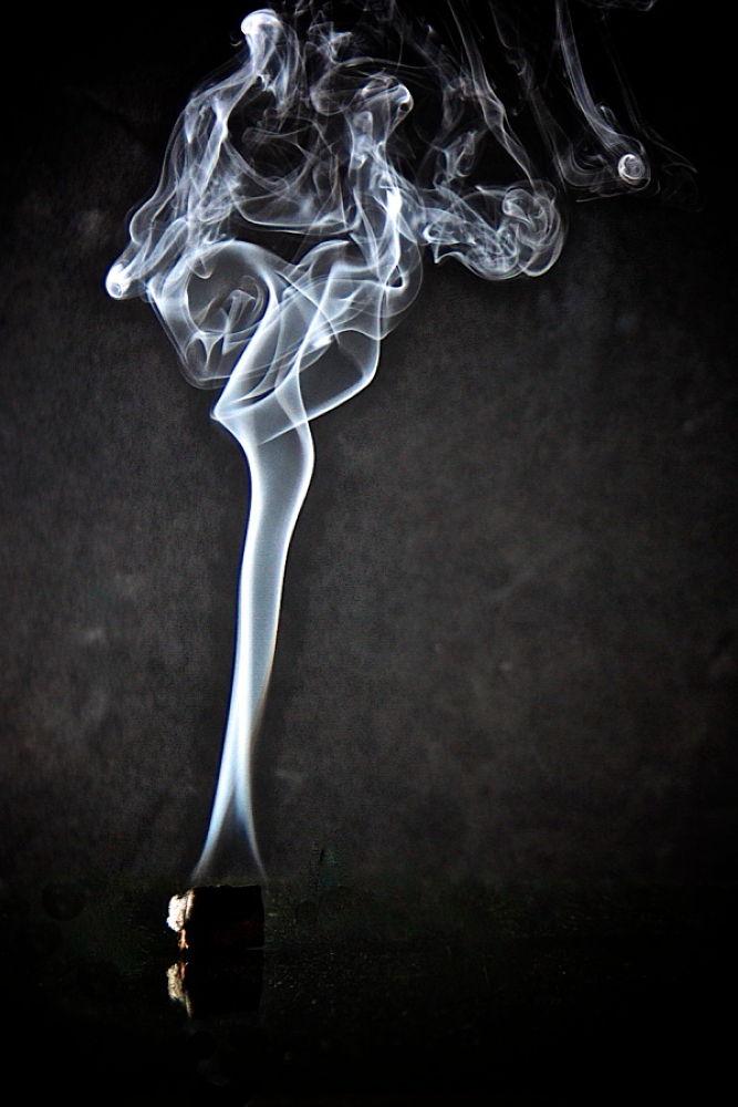 Fumo. by  Graziano Biancheri