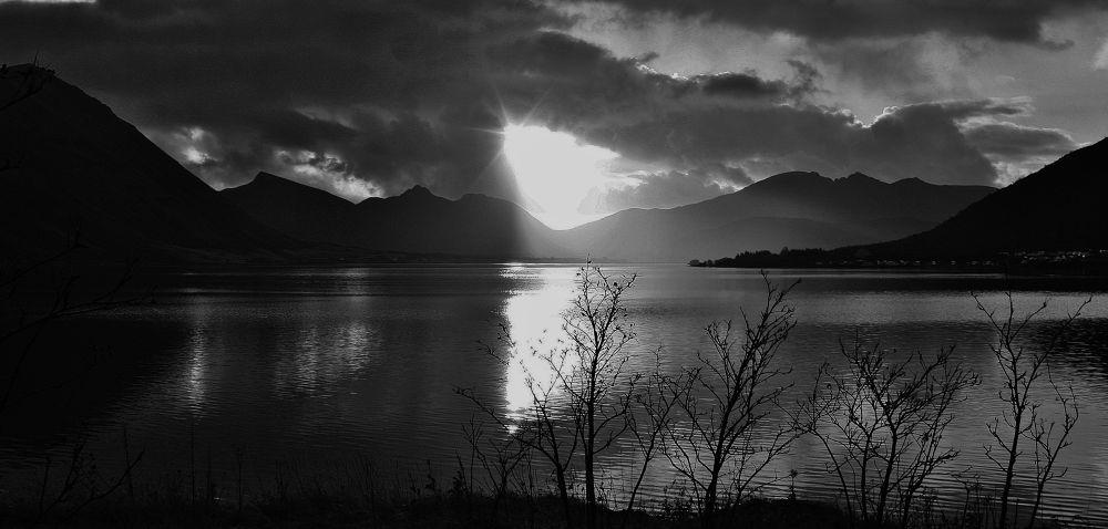 by the waters edge by vidar mathisen