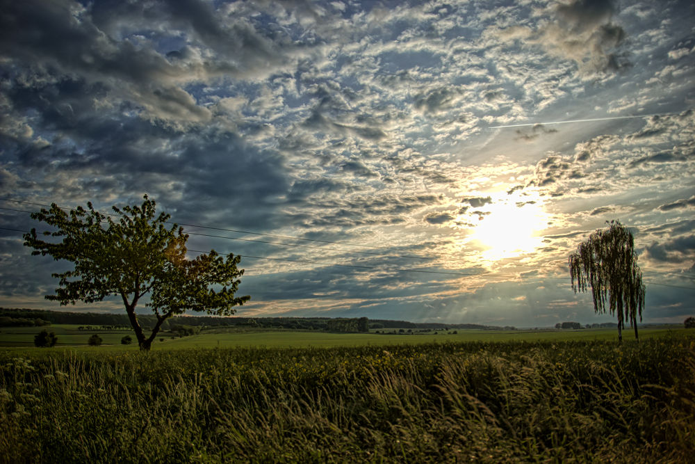 IMG_8396_7_8small.jpg by LotharWilleke