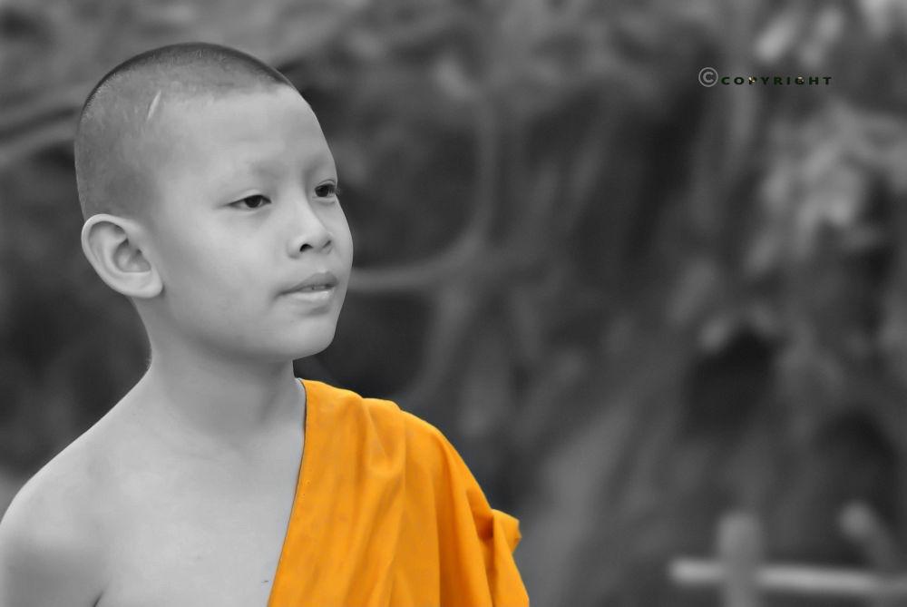 Thai Boy Monk by Pooja Moluse
