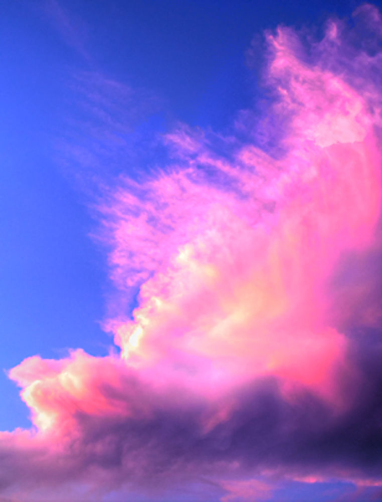 Pink-Clouds-Small by Terry L Mase