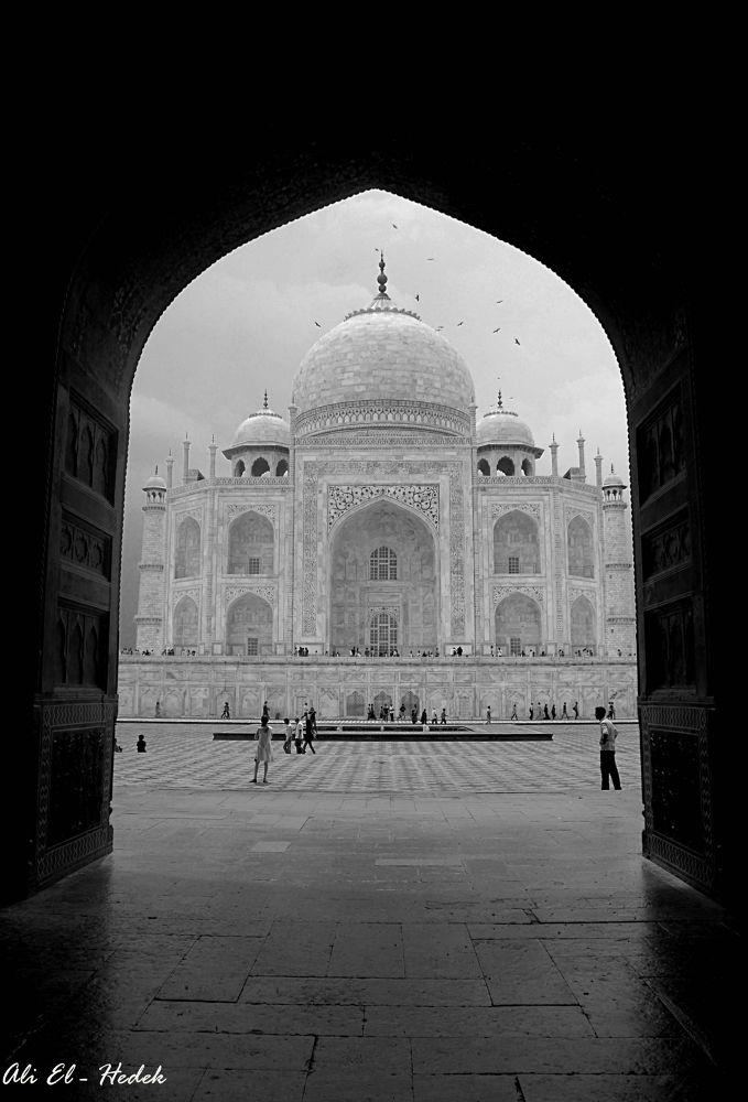 Taj Mahal by alialhedek