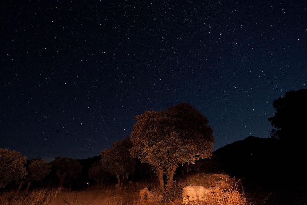 Cielo-stellato-1600px by toreserra