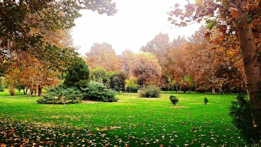 laleh park ,tehran.iran by Saeedeh Bahari
