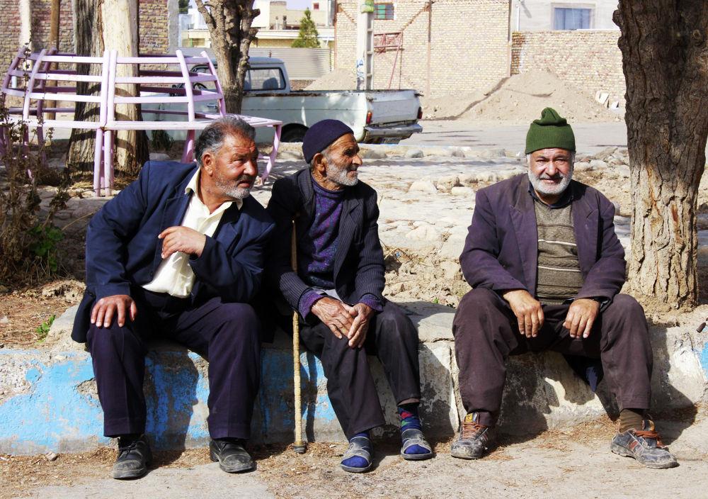 old Comrades by Sahar Mahmoodi