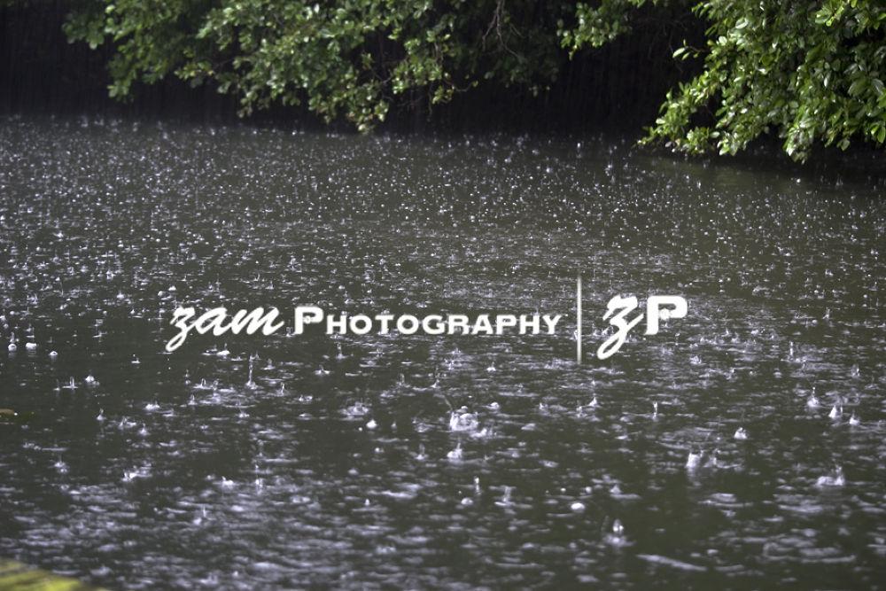 Rainy Day by zamphotography