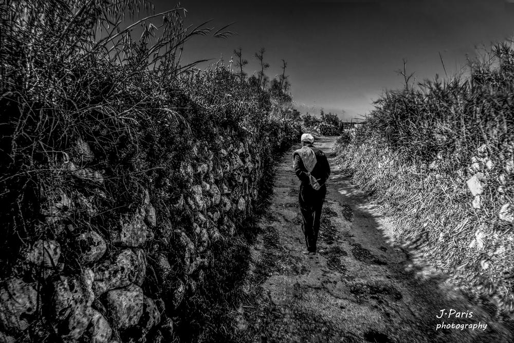 A walk in the country side Black and white by Jonathan Paris