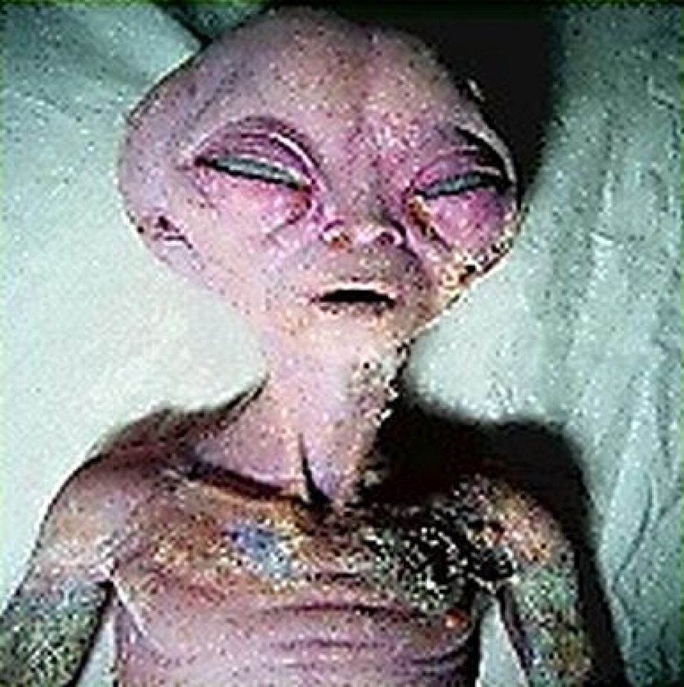 Photo in Random #alien