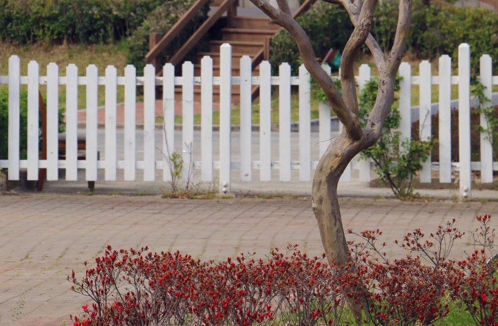 Tree & Fence by White Swan
