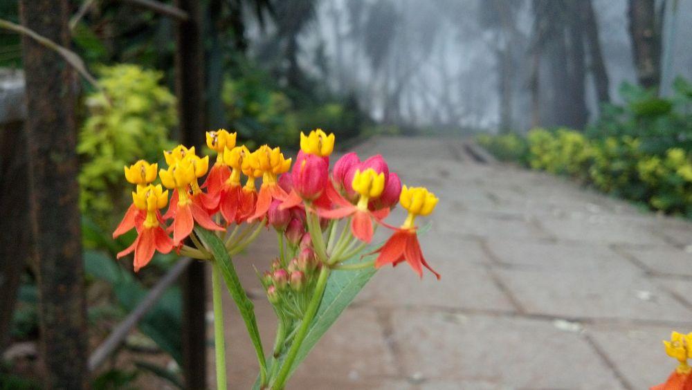 2014-02-21_07-04-06_717 by Arjun Jayachandran AJ