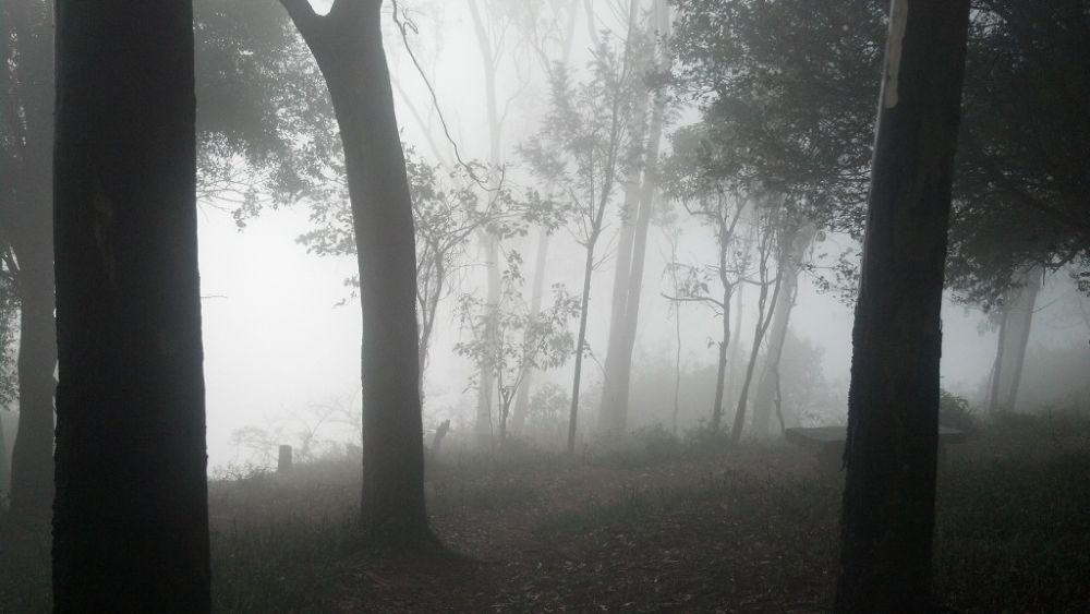 2014-02-21_07-21-00_384 by Arjun Jayachandran AJ