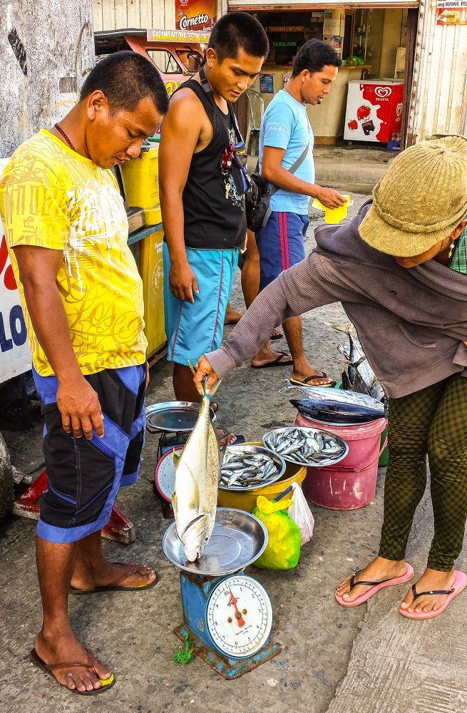 Fresh Fish For Dinner by Erlinda Bocar Kantor