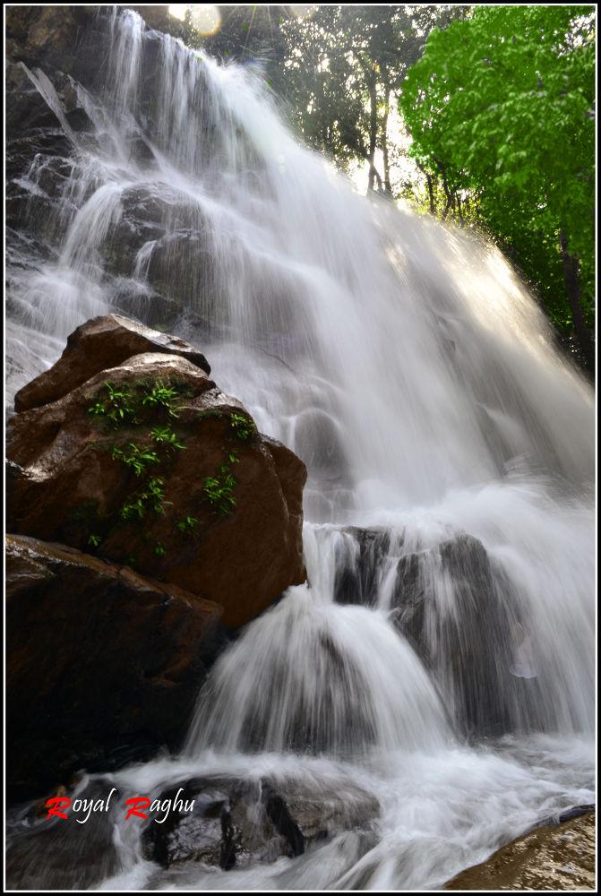 Photo in Nature #nature #falls