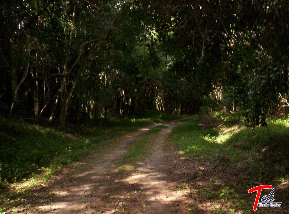 Parque San Martín - Argentina - Entre Ríos  by esteladiseniografico