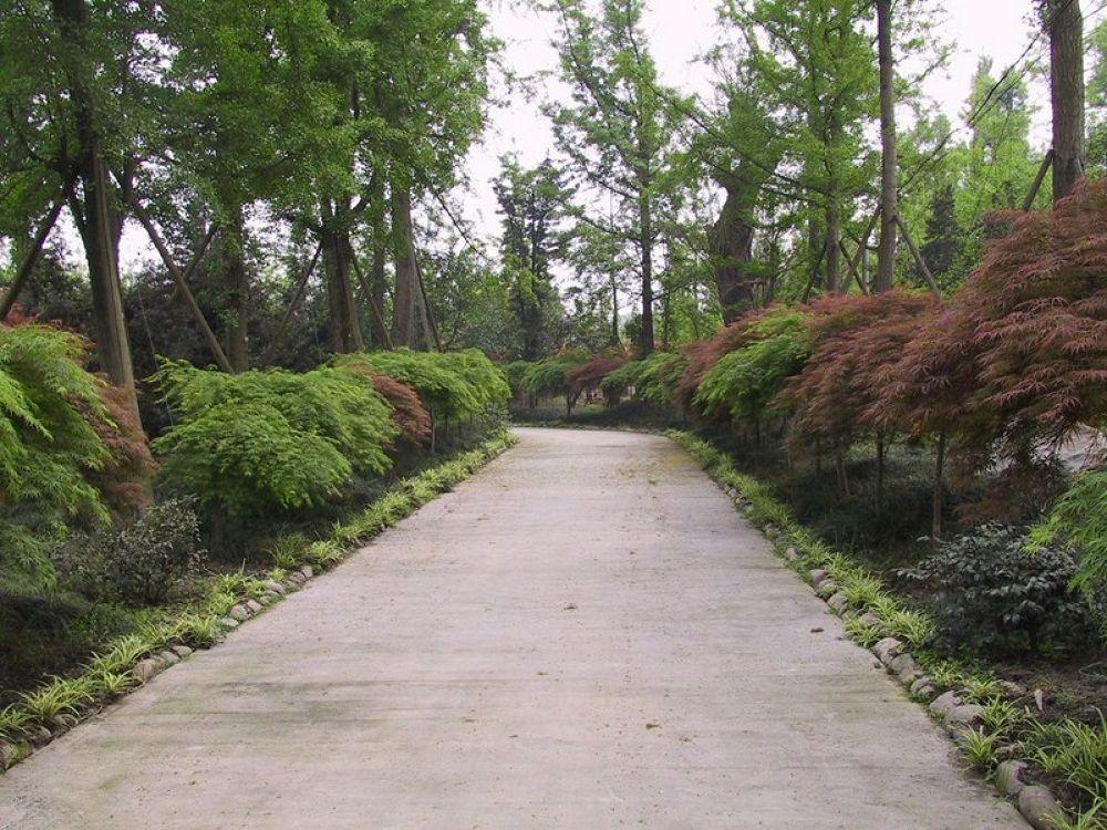Chengdu_Wenjiang_District_Garden-102 by Arie Boevé
