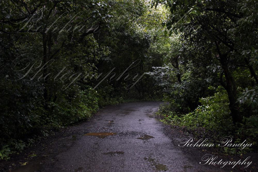 IMG_6175 by rohhanpandya