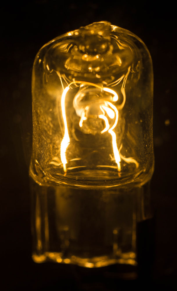 bulb by Lee Russell Wilkes