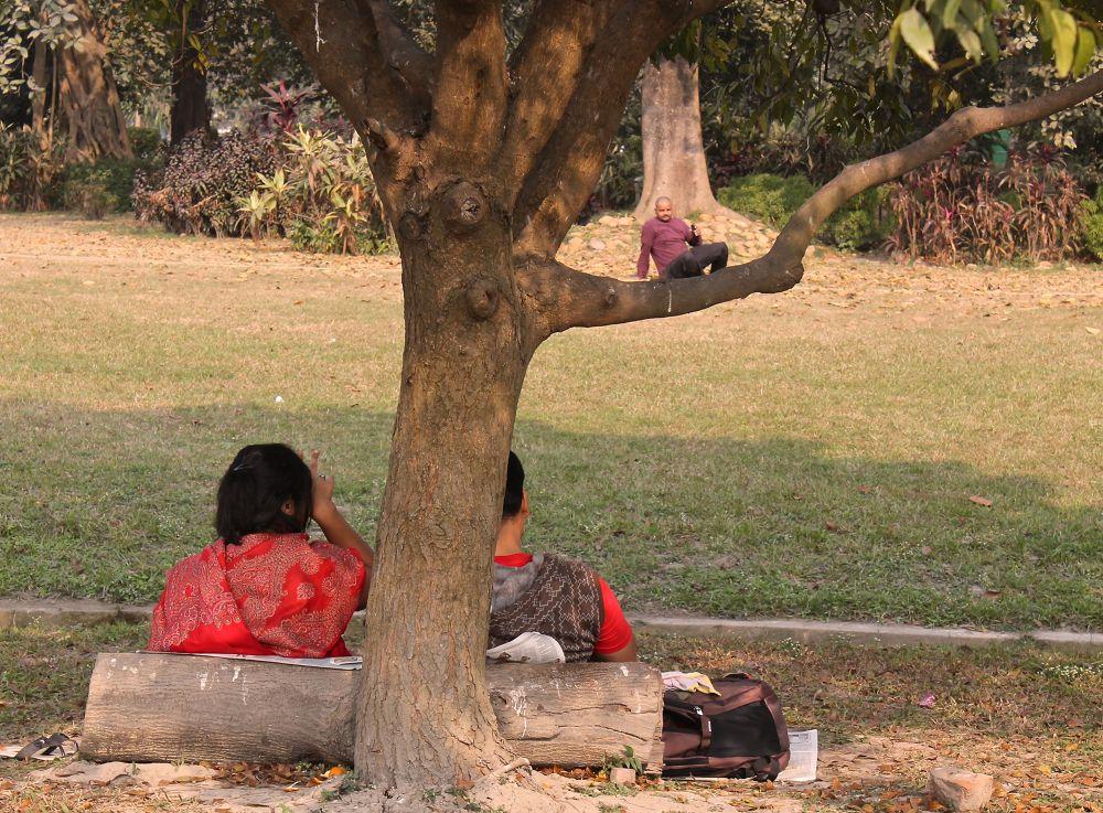 IMG_3626    Sunday in the Park - Kolkata by Sandra Dubout