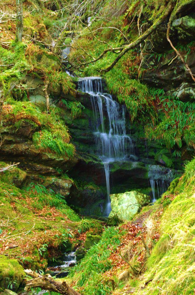 Chasing Waterfalls by Robert Nixon