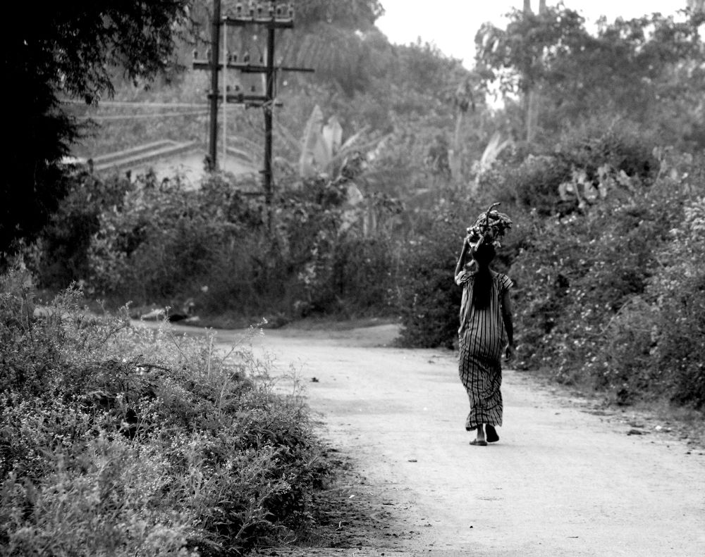 Returning Home by Ravi Sharma