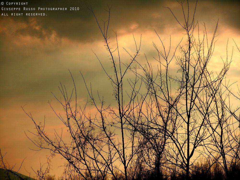 Sunset by Joseph71