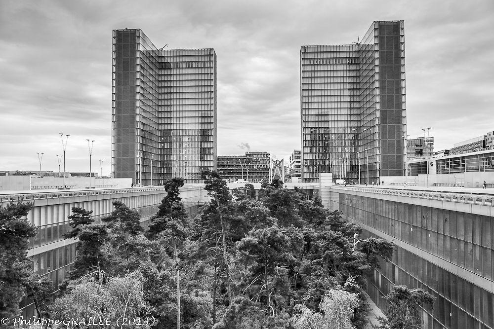 Urban jungle by Philippe Graille